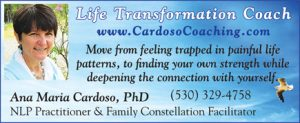 cardoso-life transformation