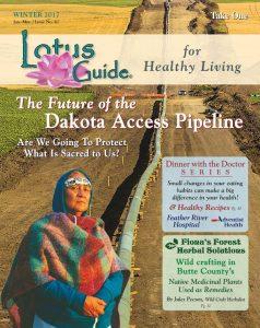 Dakota Pipeline